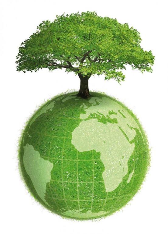 Energia per rendere il nostro un mondo pi verde for Il verde mondo