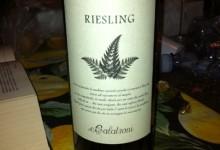 II Riesling Renano è un vitigno a bacca bianca originario della Valle Reno.