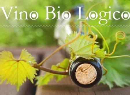 Il vino biologico italiano rappresenta veramente un'importante alternativa di mercato?