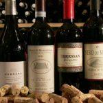 Un viaggio alla scoperta dei vini ed i vitigni piú famosi d'Italia: seconda puntata.