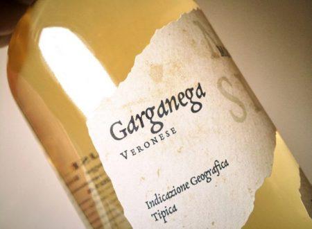 Un viaggio alla scoperta dei vini ed i vitigni piú famosi d'Italia: terza puntata.