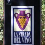 Un viaggio alla scoperta dei vini ed i vitigni più famosi d'Italia: quinta puntata, le Strade del Vino.