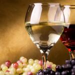 Un viaggio alla scoperta dei vini ed i vitigni piú famosi d'Italia: prima puntata.