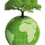 Energia per rendere il nostro un mondo più verde.